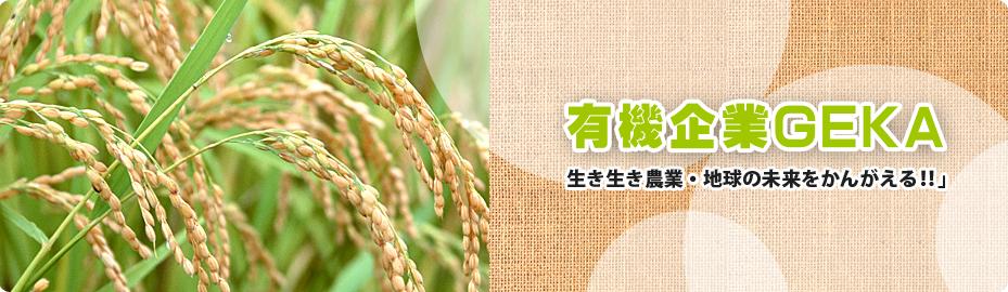 有機企業GEKA 生き生き農業・地球の未来をかんがえる!